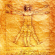 Photo of the Vitruvian Man by Leonardo Da Vinci — Stock Photo #3970871