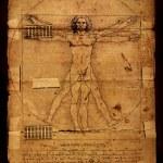������, ������: Photo of the Vitruvian Man by Leonardo Da Vinci