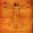 Photo of the Vitruvian Man — Stock Photo #3972102