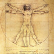 Photo of the Vitruvian Man by Leonardo Da Vinci — Stock Photo #3972688