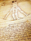Photo of the Vitruvian Man by Leonardo Da Vinci — Stock Photo