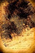 Human fingerprint — Stock Photo