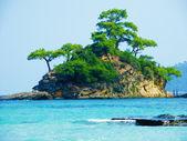 Tropical Scenic — Stock Photo