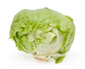 Cabbage lettuce isolated — Stock Photo