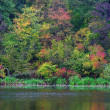 Stock Photo: Autumn on lake side, beautiful landscape