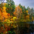 Picturesque autumn landscape of lake and bright trees and bushes — Stock Photo
