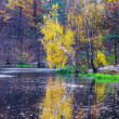 Autumn lake in golden forest - Stock Photo