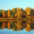 Picturesque autumn landscape on the river — Stock Photo #4164056