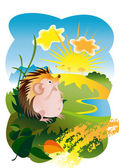 The Hedgehog and the sun — Stock Vector