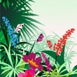 tropical flowers — Stock Vector