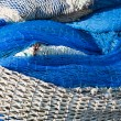 Royalty-Free Stock Photo: Fishing nets