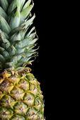 Pineapple — Stock Photo