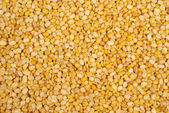 Moong Daal lentils — Stock Photo