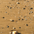 Beach sand background — Stock Photo