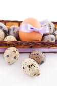 Quail and chicken eggs in basket — Stock Photo