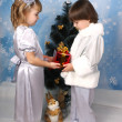 Cute girl and boy near Christmas tree with gift in hand — Stock Photo #4338089