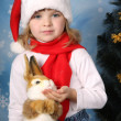Portrait of a beautiful girl in a Santa Claus hat with a rabbit — Stock Photo #4338175