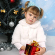 Beautiful girl in a fur cape, hat and gloves around the Christma - Lizenzfreies Foto
