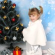 Beautiful girl in a fur cape, hat and gloves around the Christma - Stok fotoğraf