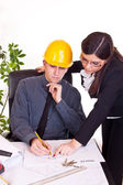 Architect co-workers — Stock Photo
