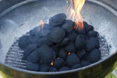Barbecue fire — Stock Photo