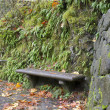 Stone Bench on Oneonta Gorge Trail Panorama - Stockfoto