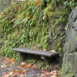 Stone Bench on Oneonta Gorge Trail Panorama - Foto Stock
