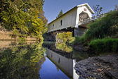 Hoffman Covered Bridge 3 — Stock Photo