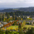 Typical Suburban Neighborhood in the Fall — Stockfoto