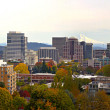 Portland Downtown Cityscape in the Fall Panorama — Stock Photo #4131625