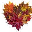 Maple Leaves Mixed Fall Colors Heart Wreath — Stock Photo