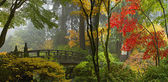 Wooden Bridge at Japanese Garden in Autumn Panorama — Stock Photo