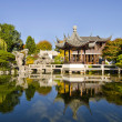 Reflection by the Pond in Chinese Garden — Stock Photo #4206102