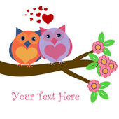 Owls in Love Sitting on Tree Branch — Stock Photo