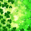 Shamrock Leaf Bokeh — Stock Photo