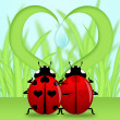 Ladybug Couple Under Heart Shape Grass — Foto de Stock
