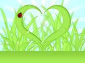 心臓形状草露の滴 — ストック写真