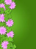 Shamrock papíru řezu jetel květiny hranice — Stock fotografie