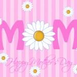Gelukkige moederdag met madeliefjebloemen — Stockfoto