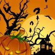 Halloween Carved Pumpkin Bats Moon Cemetery Tombstone — Stock Photo #5136982