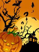 Halloween Carved Pumpkin Bats Moon Cemetery Tombstone — Stock Photo
