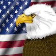 American Flag and Bald Eagle — Stock Photo #5323357