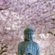 Royalty-Free Stock Photo: Sitting Full Body Buddha with Cherry Blossom Trees