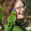Lorikeet on woman - Stock Photo