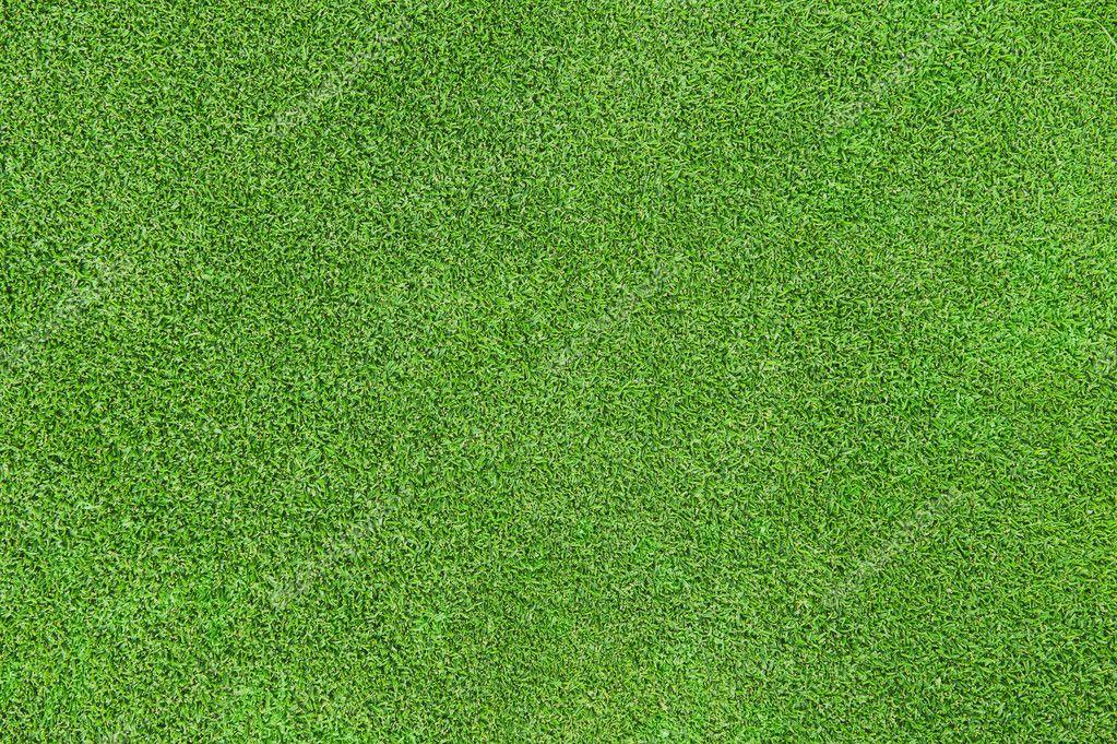 Green grass texture — Stock Photo © levkro #3939230