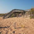 Wooden stairway over a sand dune - Photo
