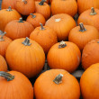 Stock Photo: Many pumpkins fill frame vertical