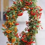 Berries crown — Stock Photo #4784374