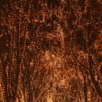 Illumination background — Stock Photo