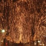 Sendai December illumination festival — Stock Photo